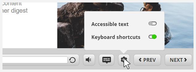 Accessibility settings menu- gear icon