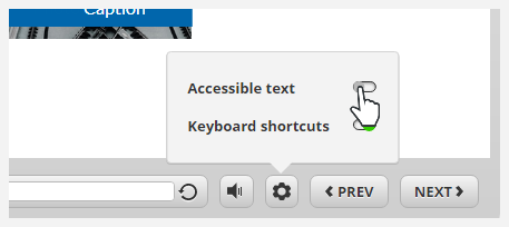 Accessible text switch