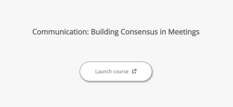"Accessible launch page with course title, launch button, and ""new window"" warning"
